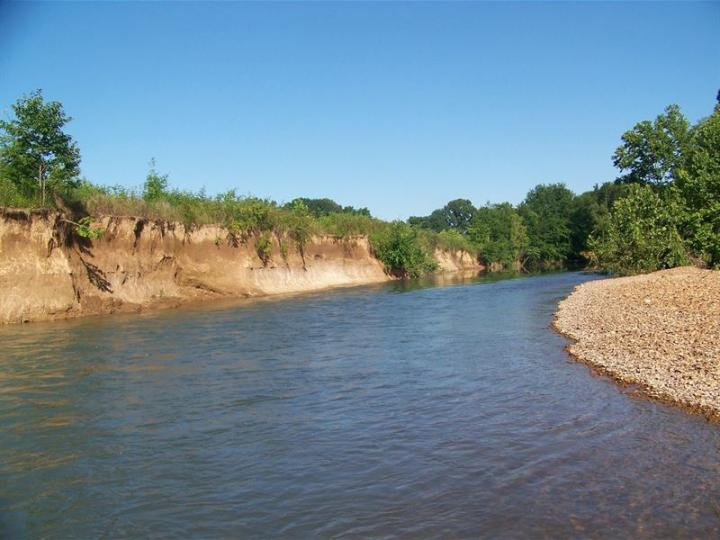 Creek Front Property Tn, Tillable : Land for Sale in Savannah, H